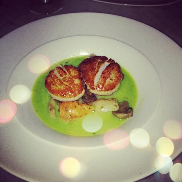 seared-diver-scallops
