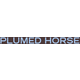 plumed-horse