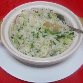 vegetable-&-salted-pork-rice