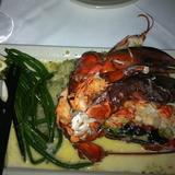 live-maine-lobster