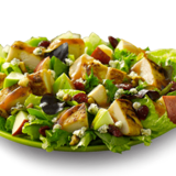 apple-pecan-chicken-salad-half-size