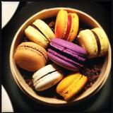 selection-of-macarons