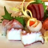 sashimi-regular