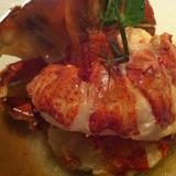 butter-poached-lobster