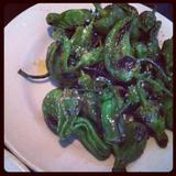 blistered-padron-peppers