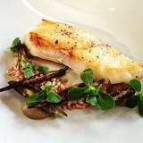 seared-grouper,-tomato,-eggplant,-heirloom-squash